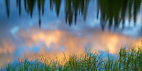 Evening reflection on a lake in Mount Rainier National Park.  The grass reeds give you a hint of the orientation.