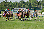 30 MAY 2010: Strike It Rich, Garrett Gomez up, leads the way in the Little Silver Stakes at Monmouth Park.