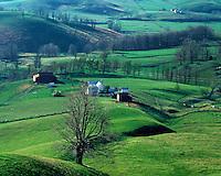 Rural scene near Staunton, VA