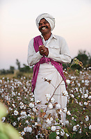 INDIEN Madhya Pradesh Khargone , Kooperative Shiv Krishi Utthan Sanstha vermarktet fairtrade und Biobaumwolle von Adivasi Farmern - INDIA Madhya Pradesh Khargone , tribal farmer of cooperative Shiv Krishi Utthan Sanstha produce fairtrade and organic cotton