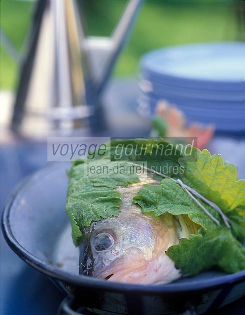 Cuisine/Gastronomie Generale: Perches farcies et roties en feuille de vigne