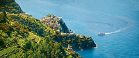 Panoramic of the vineyards and a ferry arriving at Fishing village and harbour of Riomaggiore, , Cinque Terre National Park, Liguria, Italy