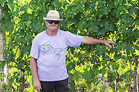 Vineyard worker posing by a vine, in straw hat, black sun shades glasses and blue tshirt Fidal vine nursery and winery, Zejmen, Lezhe. Albania, Balkan, Europe.