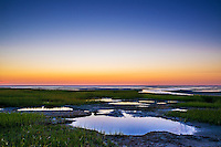 salt marsh tidal pools at low tide, Boat Meadow Beach, Eastham, Cape Cod, Massachusetts, USA