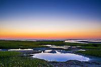 salt marsh tidal pools at low tide, Boat Meadow Beach, Eastham, Cape Cod, Massachusetts, USA