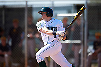 Dartmouth Big Green center fielder Nick Ruppert (1) at bat during a game against the Iowa Hawkeyes on February 27, 2016 at South Charlotte Regional Park in Punta Gorda, Florida.  Iowa defeated Dartmouth 4-1.  (Mike Janes/Four Seam Images)