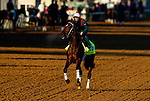April 26, 2021: Keepmeinmind gallops in preparation for the Kentucky Oaks at Churchill Downs in Louisville, Kentucky on April 26, 2021. EversEclipse Sportswire/CSM