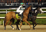 April 25, 2015 Churchill Downs Opening Night. Holiday Camp in the post parade of the William Walker Stakes.  Jockey Miguel Mena, owner Michael Lund Peterson, trainer Bob Baffert.  By Street Boss x Albany County (Forest Wildcat).  He finished 6th to Cinco Charlie.  ©Mary M. Meek/ESW/CSM