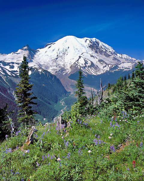 White River Valley Overlook and Mount Rainier (14411 feet), Washington, USA. .  John offers private photo tours throughout the western USA, especially Colorado. Year-round.