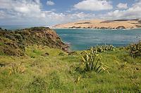 New Zealand.  Entrance to Hokianga Bay.