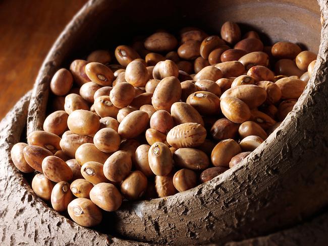 Dried Barlotti Beans