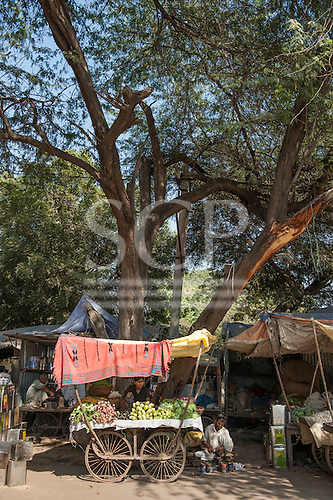Rajasthan, India. Ranthambore Market mobile stall.