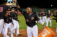 Batavia Muckdogs Albert Guaimaro (13) celebrates after a walk off win during a NY-Penn League game against the State College Spikes on July 1, 2019 at Dwyer Stadium in Batavia, New York.  Batavia defeated State College 5-4.  (Mike Janes/Four Seam Images)