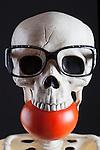 Skeleton eating a tomato, big, red, ripe, tomato.