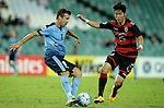 SYDNEY - APRIL 05:  Milos Dimitrijevic of Sydney FC is challenged by Dong Hyeon Kim of Pohang Steelers during the AFC Champions League group H match between Sydney FC and Pohang Steelers on 05 April 2016 held at Sydney Football Stadium in Sydney, Australia. Photo by Mark Metcalfe / Power Sport Images   *** Local Caption *** Milos Dimitrijevic;Dong Hyeon Kim