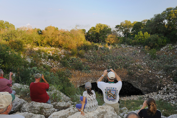 Mexican Free-tailed Bat (Tadarida brasiliensis), tourists watching bats emerging from cave, Bracken Cave, San Antonio, Hill Country, Central Texas, USA