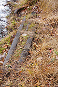 Artifact (possibly a railroad track frog) near the logging Camp 1 spur line along the Sawyer River Railroad (1877-1928) in Livermore, New Hampshire.  Railroad track frogs were used to guide the wheels of locomotives and log cars from one track to another. The Sawyer River Trail now follows this section of the old railroad bed.