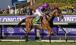 ARCADIA, CA - NOVEMBER 05: Highland Reel #12, ridden by Seamus Heffernan wins Longines Breeders' Cup Turf during day two of the 2016 Breeders' Cup World Championships at Santa Anita Park on November 5, 2016 in Arcadia, California. (Photo by Jesse Caris/Eclipse Sportswire/Breeders Cup)