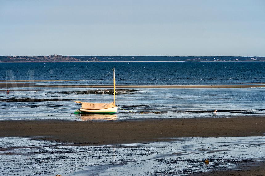 Lone sailboat morred in tidal flats, Provincetown, Cape Cod, Massachusetts, USA.