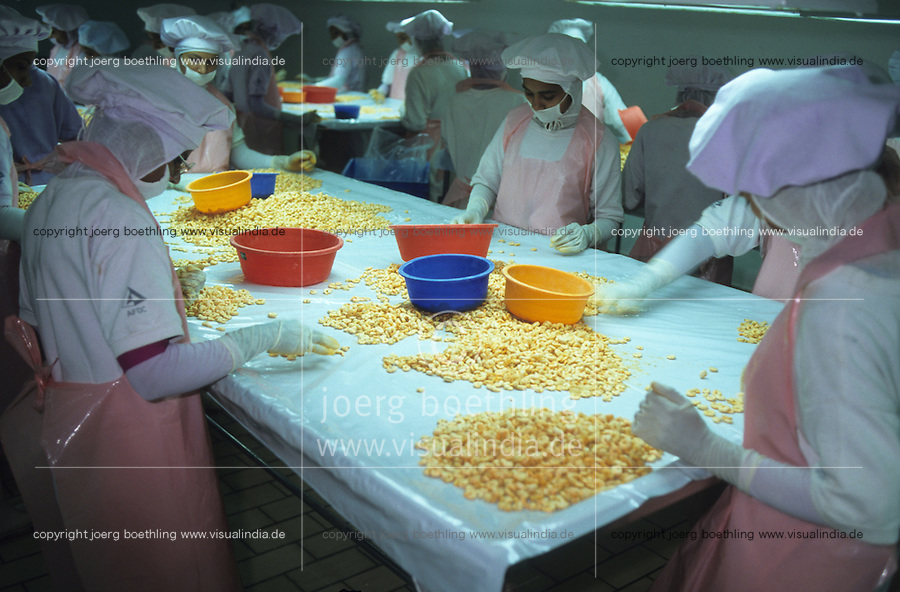 INDIA Kerala Cochin Kochi, women process and sort shrimps for export  to Europe US and Japan in shrimp processing factory / INDIEN Kerala Cochin, Frauen sortieren Garnelen in einer Fabrik fuer Export nach Europa Japan und USA