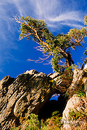 Image Ref: YR127<br /> Location: Cathedral Range State Park<br /> Date: 02.11.15