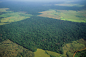 Amazonia, Brazil. Aerial view of Rainforest with large areas cleared for farming and cattle ranching; some areas newly deforested.