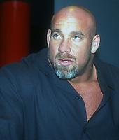 Goldberg, 2000 Photo By John Barrett/PHOTOlink
