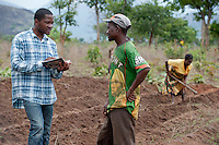 ANGOLA Kwanza-Sul, NGO ACM-KS supports small-scale farmer with training and seeds / ANGOLA Kwanza Sul, laendliches Entwicklungsprojekt der NGO ACM-KS, Dorf Catchandja, Farmer Mariano Paulo 46 auf seinem Feld, er hat Kartoffel Saatgut von ACM erhalten, Beratung durch ACM Mitarbeiter Mauricio Londjala