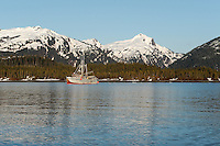 The M/V Auklet at anchor in Heather Bay, Prince William Sound, Southcentral Alaska on a sunny spring evening in early May. PR