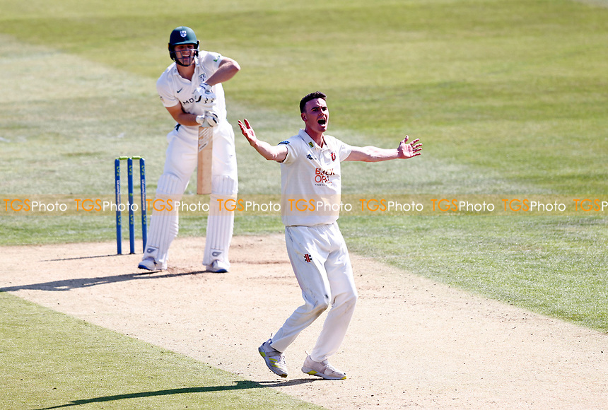 Nathan Gilchrist of Kent celebrates after trapping Dillon Penningon LBW during Kent CCC vs Worcestershire CCC, LV Insurance County Championship Division 3 Cricket at The Spitfire Ground on 5th September 2021