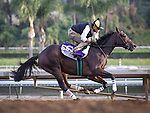 October 26, 2014: Little Alexis works in preparation for the Breeders' Cup Filly and Mare Sprint at Santa Anita Park in Arcadia, California on October 26, 2014. Zoe Metz/ESW/CSM