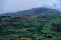 Amérique/Amérique du Sud/Pérou/Env de Cuzco : Plateau de Chinchero