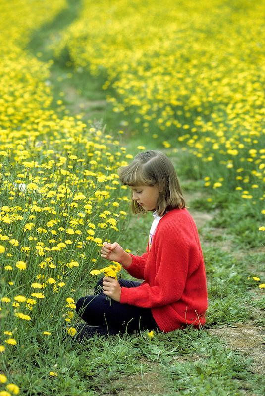Young girl in dandelion field. Near Alpine, Oregon.