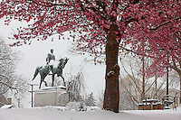 Snow covered statue in lee park in Charlottesville, Va.