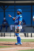 Toronto Blue Jays catcher Jesus Lopez (25) during an Instructional League game against the Philadelphia Phillies on September 27, 2019 at Englebert Complex in Dunedin, Florida.  (Mike Janes/Four Seam Images)