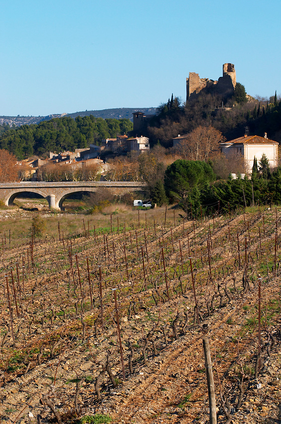 The cathare hilltop chateau in Durban-Corbieres. Fitou. Languedoc. The ruins of a chateau fortress. The vineyard. France. Europe.