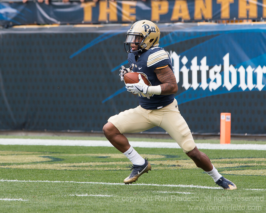 Pitt wide receiver Quadree Henderson (10) returns the opening kickoff. The Pitt Panthers defeated the Youngstown State Penguins 28-21 in overtime at Heinz Field, Pittsburgh, Pennsylvania on September 02, 2017.