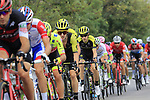 The peloton including Adam Yates (GBR) Mitchelton-Scott in action during the 99th edition of Milan-Turin 2018, running 200km from Magenta Milan to Superga Basilica Turin, Italy. 10th October 2018.<br /> Picture: Eoin Clarke | Cyclefile<br /> <br /> <br /> All photos usage must carry mandatory copyright credit (© Cyclefile | Eoin Clarke)