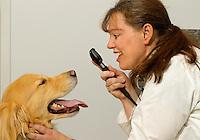 LakeCross Veterinary Hospital
