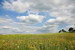 Europa, DEU, Deutschland, Hessen, Rhoen, Hessische Rhoen, Dietershausen, Landschaft, Himmel, Wolken, Kategorien und Themen, Natur, Umwelt, Landschaft, Landschaftsfotos, Landschaftsfotografie, Landschaftsfoto, Tourismus, Touristik, Touristisch, Touristisches, Urlaub, Reisen, Reisen, Ferien, Urlaubsreise, Freizeit, Reise, Reiseziele, Ferienziele<br /> <br /> [Fuer die Nutzung gelten die jeweils gueltigen Allgemeinen Liefer-und Geschaeftsbedingungen. Nutzung nur gegen Verwendungsmeldung und Nachweis. Download der AGB unter http://www.image-box.com oder werden auf Anfrage zugesendet. Freigabe ist vorher erforderlich. Jede Nutzung des Fotos ist honorarpflichtig gemaess derzeit gueltiger MFM Liste - Kontakt, Uwe Schmid-Fotografie, Duisburg, Tel. (+49).2065.677997, ..archiv@image-box.com, www.image-box.com]