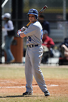 March 15, 2010:  Zach Porter of the Roger Williams University Hawks in a game vs Fontbonne University at Lake Myrtle Park in Auburndale, FL.  Photo By Mike Janes/Four Seam Images