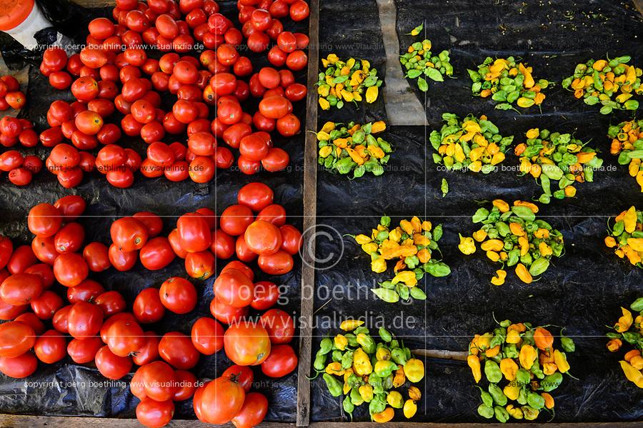 BURKINA FASO, Provinz Poni, Gaoua, market, vegetables like chillies, tomatos / Markt, Verkauf Gemuese, Tomate, Chillies