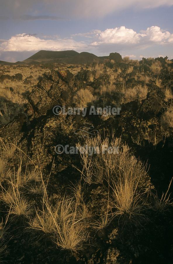 Cinder cone, Black Rock Lava Flow in Nevada's Big Sand Spring Valley.