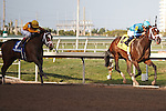 Live Lively leaves race favorite Dreaming of Julia behind on her way to winning the Davona Dale(G2) at Gulfstream Park. Hallandale Beach Florida. 02-23-2013