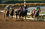 """ARCADIA, CA  SEP 26: #1 Take the One O One, ridden by Jose Valdivia, Jr., leads into in the stretch of the Awesome Again (Grade l) """"Win and You're In Breeders' Cup Classic Division"""" on September 26, 2020 at Santa Anita Park in Arcadia, CA.  (Photo by Casey Phillips/Eclipse Sportswire/CSM."""