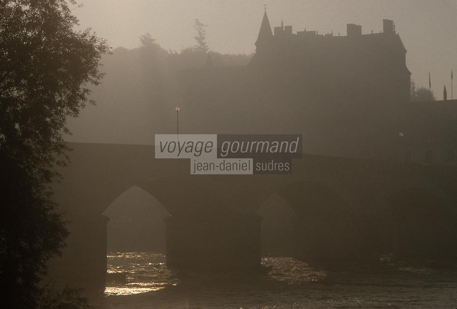 Europe/France/Centre/37/Indre-et-Loire/Val de Loire/Amboise : La Loire et le château à l'aube