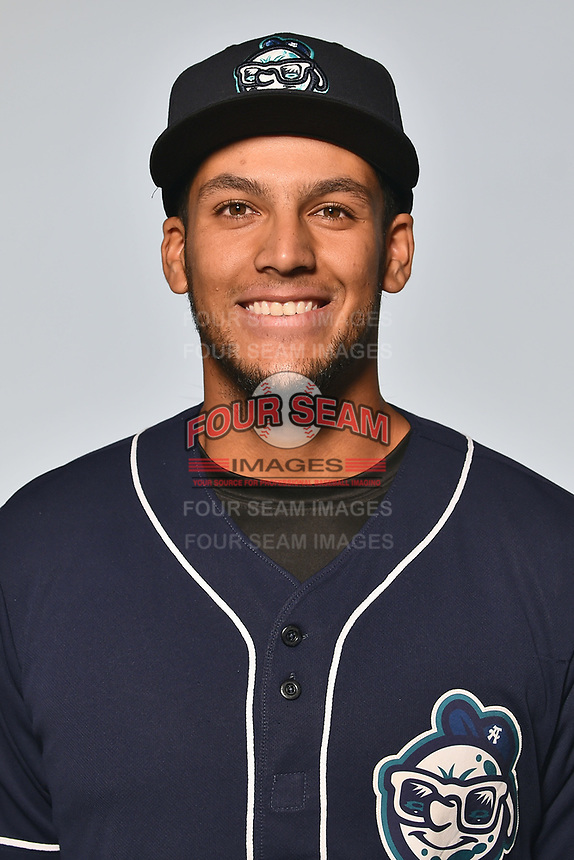 Asheville Tourists catcher Joel Diaz (5) poses for a photo at Story Point Media on April 4, 2017 in Asheville, North Carolina. (Tony Farlow/Four Seam Images)