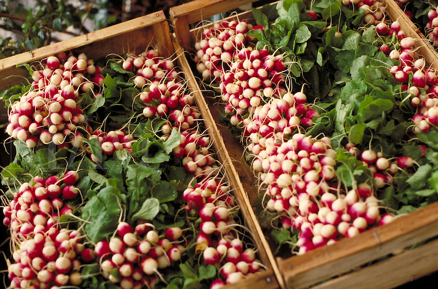 Radishes at a fruit & vegetable stand. Paris, France. Paris, France.
