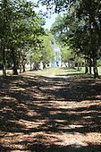 Carolina Mansion