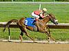 Wycked winning at Delaware Park on 6/6/12